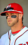 4 March 2012: Washington Nationals outfielder Bryce Harper stands in the dugout prior to Spring Training action against the Houston Astros at Space Coast Stadium in Viera, Florida. The Astros defeated the Nationals 10-2 in Grapefruit League action. Mandatory Credit: Ed Wolfstein Photo