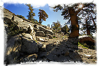 High Sierras, Sierras, path, mountains, rocks, sunburst, sun, california, nature, blue skys, sunny,