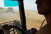 Barkhivka, Ukraine.July 31, 2005 ..Combine driver Aleksander Sakhno, 22  works for the Mariupil Harvesting Company. It has 14 John Deers combines, and rents them out everywhere in the Ukraine........