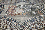 Africa, Morocco, Volubilis. Mosaic work of Volubilis.