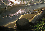 wave washed log on a beach near sunset on Lake Washington during a strong breeze