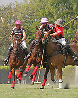 WELLINGTON, FL - MARCH 12:  Facundo Pieres of Orchard Hill (black jersey) and Tomas Pieres of Audi battle for the ball with Polito Pieres following as backup as Orchard Hill defeats Audi 9-8, in the early rounds of the 26 goal USPA Gold Cup at the International Polo Club, Palm Beach on March 12, 2017 in Wellington, Florida. (Photo by Liz Lamont/Eclipse Sportswire/Getty Images)