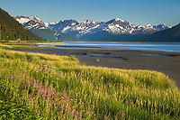 Turnagain Arm, south of Anchorage, Chugach National Forest, Alaska
