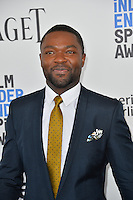 David Oyelowo at the 2017 Film Independent Spirit Awards on the beach in Santa Monica, CA, USA 25 February  2017<br /> Picture: Paul Smith/Featureflash/SilverHub 0208 004 5359 sales@silverhubmedia.com