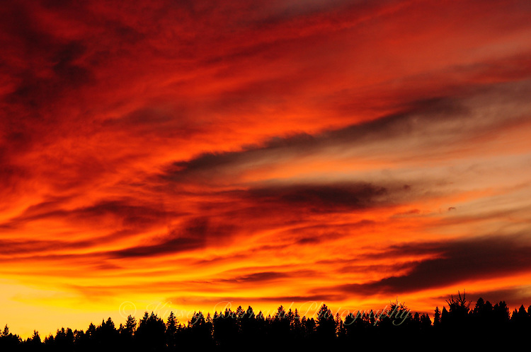 &quot;BIG SKY ON FIRE&quot;<br />