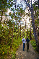 woman tourists, hiking rainforest trail, Hawaii Volcanoes National Park, Kilauea, Big Island, Hawaii, USA