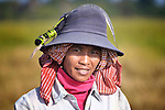 Mean Thorn, a woman in the Cambodian village of Somrith, at work harvesting rice. She is a member of a community rice bank organized by the Community Health and Agricultural Development program of the Methodist Mission in Cambodia.