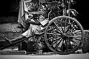 A rickshaw puller takes an afternoon nap in Calcutta, India. 93 out of every 100 rickshaw pullers are homeless. They sleep after the city sleeps and wake up before everyone else does. Many of them are the sole bread earners for their family. Many plus 40. Many minus any other specialisation for any other job. Of the twenty four thousand rickshaw pullers, only 387 have licenses. .Many rickshaw pullers earn a meagre wage of 100-150 rupees (US $ 2.25-3.5) a day of which they have to give a daily rickshaw rent of 60 (US$ 1.35) rupees to the agent at the end of the day.