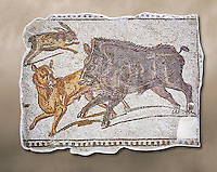 First half of the 3rd century AD Roman mosaic depiction  a wild boar and hare hunt. From Hadrumetum (Sousse), Tunisia.  The Bardo Museum, Tunis, Tunisia.