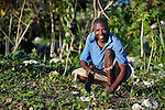Abel Dupres works in his farm field early in the morning in Despagne, a rural village in southern Haiti where the Lutheran World Federation has been working with residents to improve their quality of life.