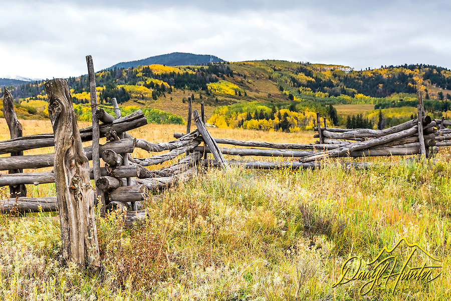 Snake rail fences are ubiquitous in the San Juan Mountains of southwestern Colorado, most rotting into the ground. I love to include them in my autumn landscapes.