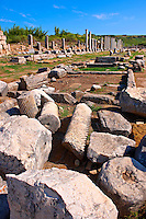 Ruins of the Roman Columned street which was lined with shops & stores.  Perge (Perga) archaeological site, Turkey