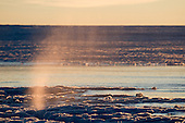 The evening sun lights up a column of water spurting out of a crack in the center of a recently drained lake bed on the summer Greenland ice cap.