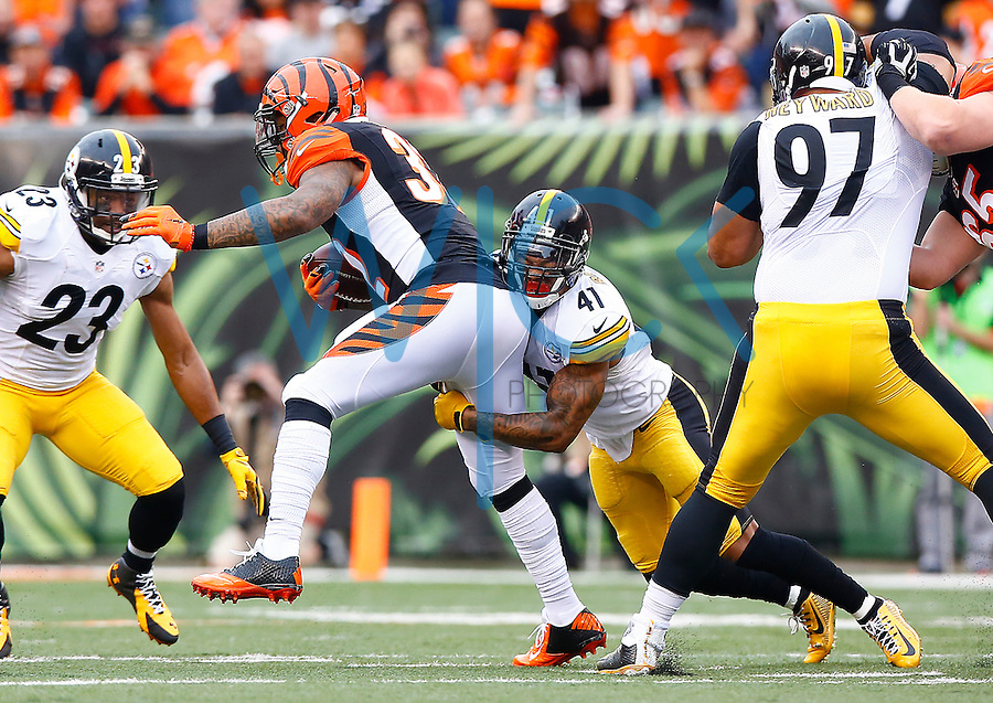 Antwon Blake #41 of the Pittsburgh Steelers tackles Jeremy Hill #32 of the Cincinnati Bengals during the game at Paul Brown Stadium on December 12, 2015 in Cincinnati, Ohio. (Photo by Jared Wickerham/DKPittsburghSports)