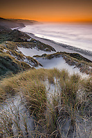 Intense sunset over remote coastline with sand dunes, pingao and marram grass near Paturau on west coast of South Island, Nelson Region, New Zealand