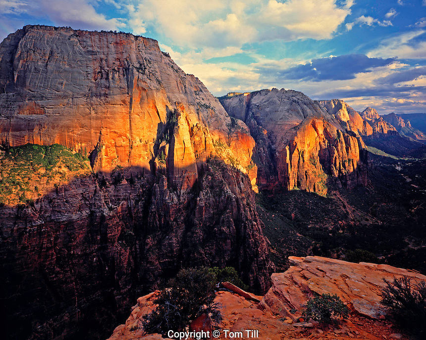 Angels Landing View of Zion Canyon at Sunset, Zion National Park, Utah