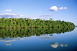 Mato Grosso State, Amazon, Brazil. Forested river bank with perfect reflection of sky with puffy clouds and trees in the river.