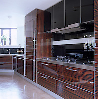 The sleek Macassar ebony kitchen was custom-made and features a polished concrete floor and stainless steel work surfaces