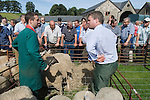 Priddy Sheep Fair auctioneer ( in green ringing bell ) and assistant Somerset Uk 2009 . Auctuioneer traditionally rings hand bell at the start of the acution to let people know the auction is about to start.