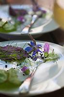 Europe/France/Rhône-Alpes/26/Drôme/Saint-Paul-Trois-Châteaux:  Képhyr à l'huile d'Olive de Nyons recette de  Cédric Denaux  du Restaurant L et Lui