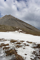 Hiking across remnant snow in the Arctic National Wildlife Refuge, Brooks Range, Arctic Alaska.