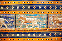 Lion relief on glazed bricks from the Ishtar Gate, Babylon, Iraq constructed in about 575BC by order of King Nebuchadnezzar II on the north side of the city. Dedicated to the Babylonian goddess Ishtar, the monumental gate joined the inner & outer walls of Babylon it was one of the Seven Wonders of the ancient world. Istanbul Archaeological Museum.