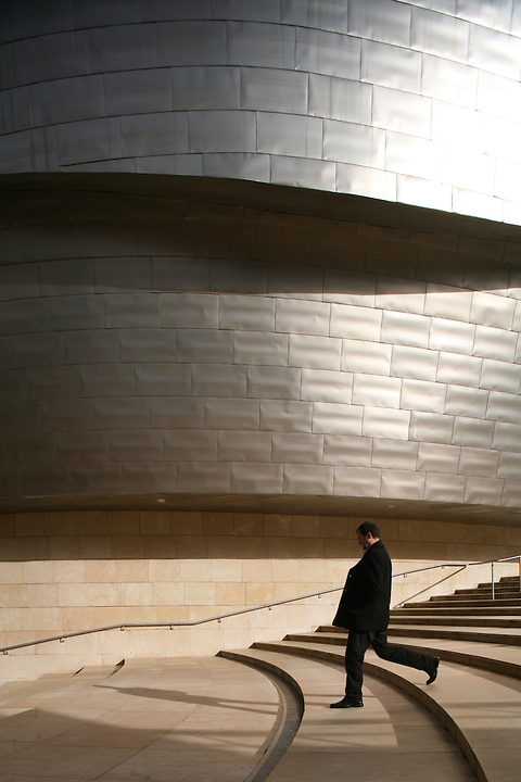 Guggenheim Museum Bilbao. Photo by Robin Hill (c)