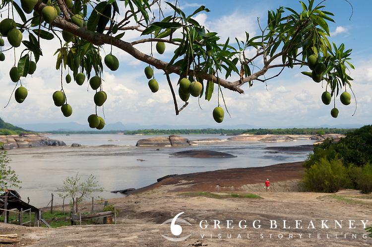 Orinoco River Basin near the Ventanas boulder field - Colombia - South America