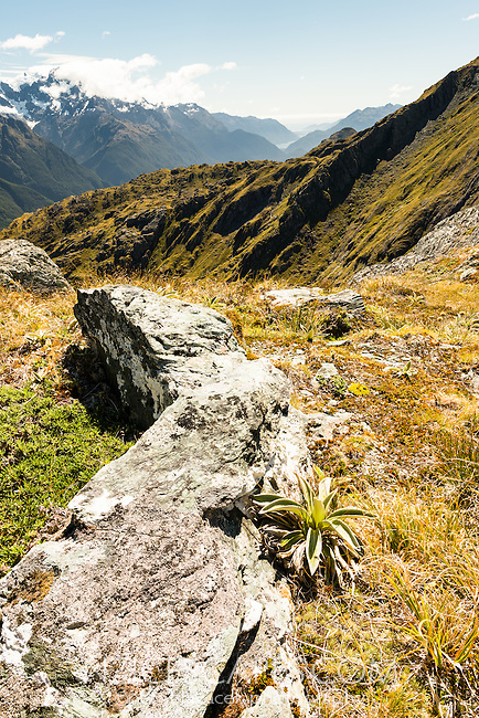 Endless views from Conical Hill 1515m on Routeburn Track towards Martins Bay in Fiordland, Fiordland National Park, UNESCO World Heritage Area, Southland, South Island, New Zealand, NZ