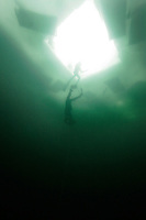 A diver descending during the freediving competition Oslo Ice Challenge at freshwater lake Lutvann, outside the Norwegian capital Oslo. Atheletes, including current and former world champions, entered a hole in the ice to compete. The participants reached depths down to 52 meters below the surface.