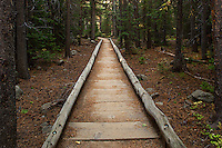 Wooden pathways are scattered throughout the trail to Bierstadt Lake from Bear Lake, Rocky Mountain National Park, Colorado.