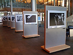 """Homeless in Seattle"" exhibition in the main hall of the Seattle City Hall. Summer 2008."