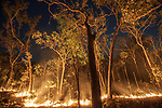 Bush fire, Arnhem Land, Northern Territory, Australia