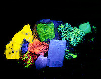 MINERAL FLUORESCENCE<br /> (2 of 2)<br /> Photoluminescence Under Full spectrum UV light<br /> 1) powellite (yellow) 2) willemite (green) 3) scheelite (blue) 4) calcite (red) 5) calcite (red), willemite (green) 6) optical calcite (blue) 7) willemite (green) 8) opal patch (green)