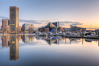 A new day begins in Baltimore with part of the skyline, including the World Trade Center and The National Aquarium, reflected in the still waters of the Inner Harbor during the last hour before sunrise.