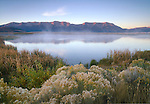 Montana, Southwest, Monida, Centennial Valley, Red Rock Lake wildlife refuge. Mist rises from a pond  reflecting the Centennial Range at dawn in autumn.