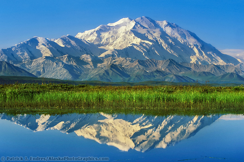 20, 3020+ Ft. Mt. Denali reflects In A Tundra Pond, Denali National Park, Alaska.