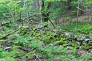 An old stone wall along the Cobble Hill Trail in Landaff, New Hampshire during the summer months. This area was part of an 1800s hill farming community