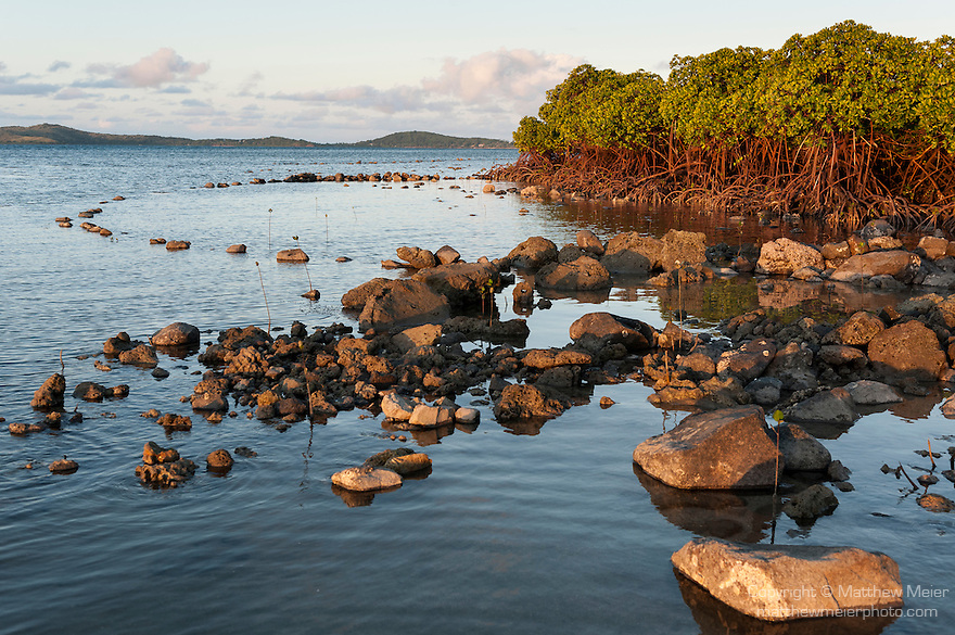 Rakiraki, Viti Levu, Fiji; a traditional fish trap, made of stones to create a pool at low tide, sits at the edge of mangroves protecting the shoreline
