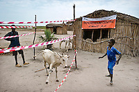 Boys and calves outside a Referendum Centre on the road between Bentiu and Nyal. In January 2011 South Sudan will vote to decide its independence.
