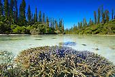 Rivière de la baie d'Oro, Ile des Pins, Nouvelle-Calédonie