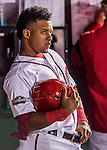 13 October 2016: Washington Nationals infielder and Baseball America top prospect Wilmer Difo awaits a pinch hitting appearance in the NLDS Game 5 against the Los Angeles Dodgers at Nationals Park in Washington, DC. The Dodgers edged out the Nationals 4-3, to take Game 5, and the Series, 3 games to 2, moving on to the National League Championship against the Chicago Cubs. Mandatory Credit: Ed Wolfstein Photo *** RAW (NEF) Image File Available ***