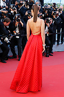 """Bella Hadid at the """"Okja"""" premiere during the 70th Cannes Film Festival at the Palais des Festivals on May 19, 2017 in Cannes, France. (c) John Rasimus /MediaPunch ***FRANCE, SWEDEN, NORWAY, DENARK, FINLAND, USA, CZECH REPUBLIC, SOUTH AMERICA ONLY***"""