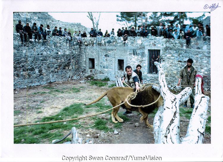 AFG Kabul Zoo Marjan 28 Mars 1995
