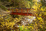 Idaho, North, Shoshone County, Prichard. A bridge on trail 33 in the Coeur d'Alene National Forest.