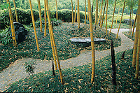 An scene created by a bamboo forest accented with a low bamboo ground cover and a dry gravel stream (karesansui) seems to evoke an exotic and timeless  sense of serenity in this Japanese garden at the Bamboo Park in Kyoto.