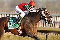 Laurel- February 20:  2011 Preakness contender Yawanna Twist wins The General George Handicap Grade II ridden by Michael  Luzzi. Trained by Rick  Dutrow  at Laurel Park on February 20, 2012 in Laurel, MD.
