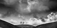 Isolated twin trees, framed by cloud and symmetrical rolling hills.