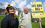 'March of the beekeepers'. Protest by beekeepers and members of the public against DEFRA minister Owen Paterson's opposition to a proposed EU ban on the use of neonicotinoid pesticides, which many leading scientists (including those on the House of Commons' own Environmental Audit Committee) believe is killing bees in alarming numbers (3 species of bee are already extinct). The protest was organised by Avaaz, 38 Degrees and other organisations, who have been campaigning on the issue for many months, with public petitions in support of a ban on neonicotinoids already reaching over 2.6 million signatures. Parliament Square, Westminster, London, UK (26 April 2013). Pictured on the right, Malcolm Lee, a beekeeper from South Africa.