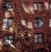 Carlos Mota - New York
